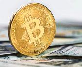 Kryptowährungen im freien Fall – das sind die Gründe!
